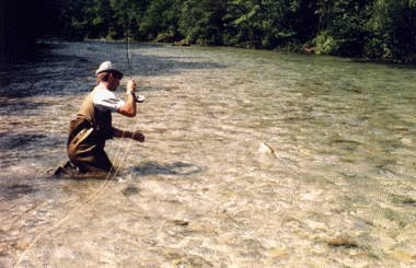 trout and wet fly fishing, Fly Fishing Bait